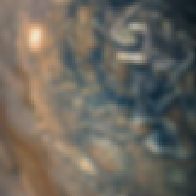 Dizzying Clouds In The Norther... is listed (or ranked) 1 on the list This Visual Tour Of Jupiter Shows The Gas Giant In All Its Jovian Glory