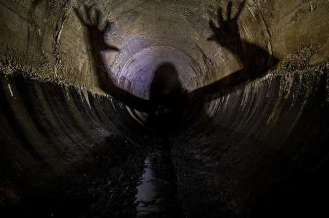 """In 1979, A Man """"Saw A Li... is listed (or ranked) 1 on the list A """"Living Nightmare"""" Lurks In Toronto's Underground Waterways... Waiting"""