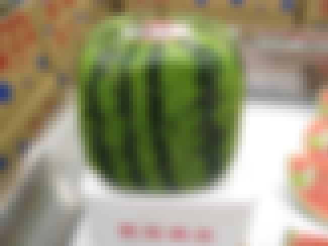 Prime Fruit In Japan Can Sell ... is listed (or ranked) 1 on the list You Too Can Buy A $27,000 Melon - A Look At Japan's Obsession With Luxury Fruit