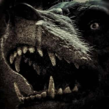 The Werewolves Of Poligny Were is listed (or ranked) 2 on the list If You Thought The Witch Trials Were Brutal, Those Condemned As Werewolves Suffered Far Worse Fates