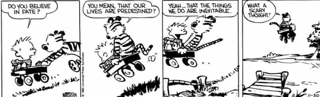 Fate, Destiny, And Prede... is listed (or ranked) 2 on the list The Surprisingly Dark Political Philosophy of Calvin And Hobbes That You Definitely Missed As A Kid
