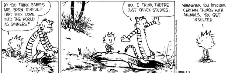 The Surprisingly Dark Political Philosophy of Calvin And Hobbes