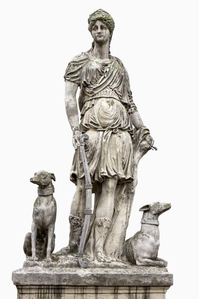 The Wives Of Antiquity P... is listed (or ranked) 3 on the list These Are The Fascinating Pets Of The Ancient World