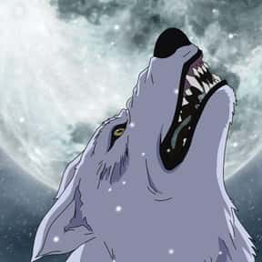 Wolf's Rain is listed (or ranked) 1 on the list The 15+ Best Werewolf Anime Of All Time