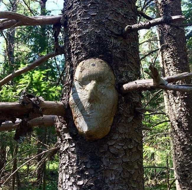 Beware The Faceless Men is listed (or ranked) 3 on the list Creepy And Sinister Trees That Look Like They Grew Out Of The Pits Of Hell
