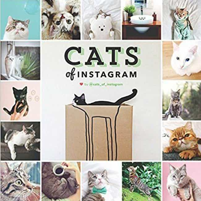 Cats Of Instagram is listed (or ranked) 1 on the list The Best Coffee Table Books for Cat Lovers