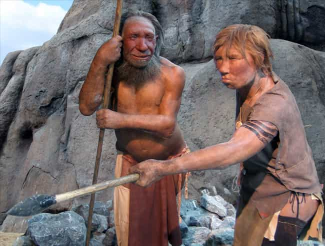 Incest And Inbreeding Were A N... is listed (or ranked) 3 on the list Everything We've Been Able To Figure Out About The Sex Lives Of Neanderthals