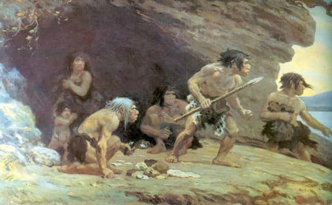 Neanderthals Mated With Humans... is listed (or ranked) 4 on the list Everything We've Been Able To Figure Out About The Sex Lives Of Neanderthals