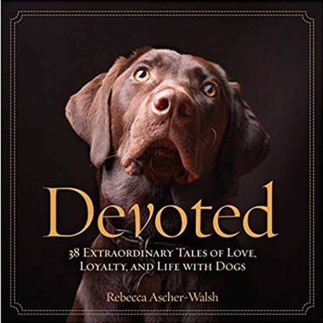 Devoted: 38 Extraordinar... is listed (or ranked) 1 on the list The Best Cheap and Inexpensive Coffee Table Books