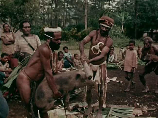 The Animal Slaughter Sce... is listed (or ranked) 2 on the list The Making And Release Of 'Cannibal Holocaust' Was Just As Nasty As The Film Itself