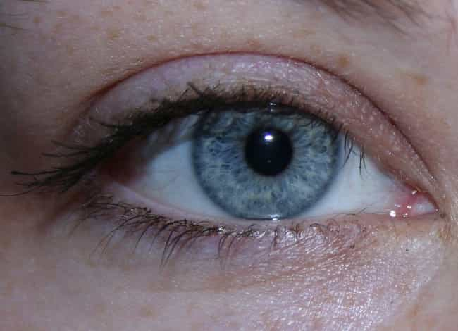 Your Eyes Are Blue For The Sam... is listed (or ranked) 1 on the list Fascinating Facts About Your Freaky Eyeballs