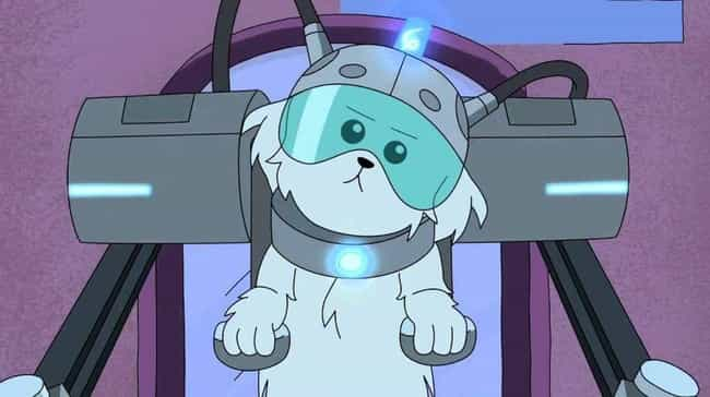'Lawnmower Dog' Is A S... is listed (or ranked) 8 on the list Obscure Pop Culture References From Rick And Morty, Explained