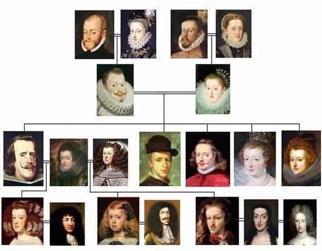 Charles Was More Inbred ... is listed (or ranked) 2 on the list Charles II Of Spain Destroyed His Dynasty And Plunged Europe Into War, In Part Because He Was Inbred