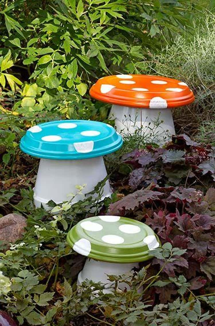 A Garden Mushroom