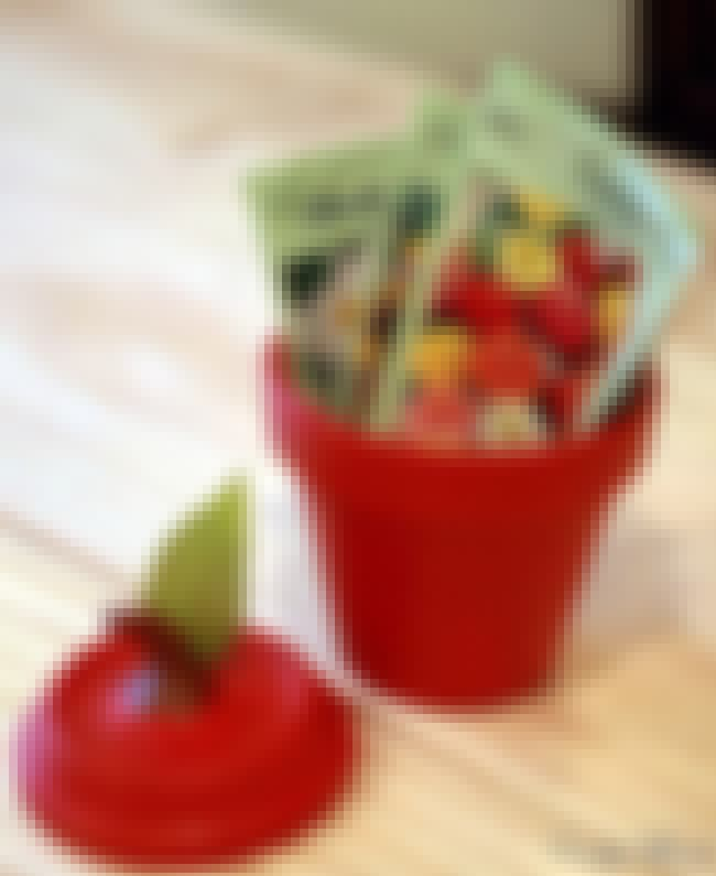 An Apple Clay Jar is listed (or ranked) 3 on the list Clay Pot Craft Ideas That Don't Require Any Houseplants Whatsoever