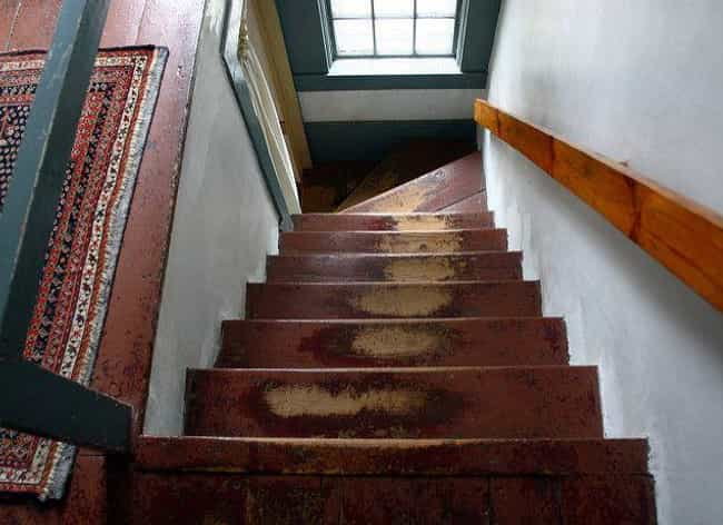 Eady Fell Down The Stair... is listed (or ranked) 1 on the list After Briefly Dying, A Young Girl Came Back With Accurate Memories Of Her Past Life In Ancient Egypt
