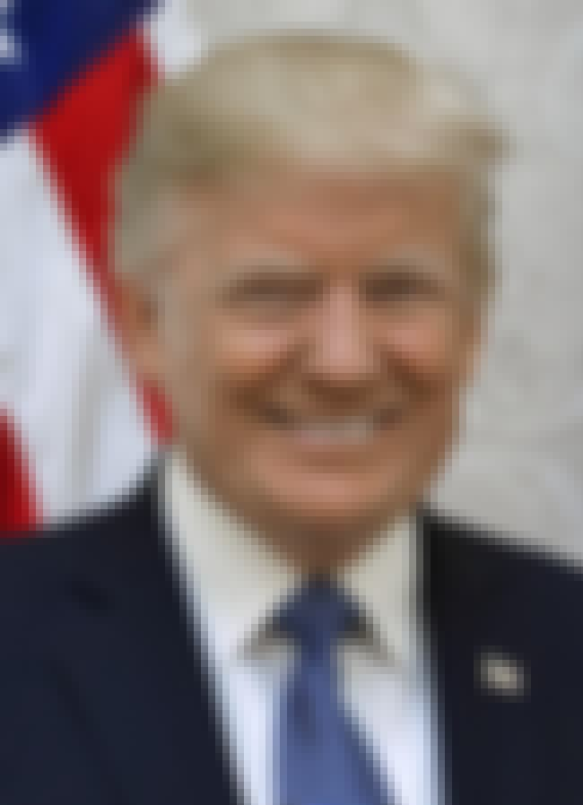 'Trump Raises Concerns Abo... is listed (or ranked) 3 on the list Headlines From February 19–25, 2018 That Perfectly Encapsulate How F*cked We Are