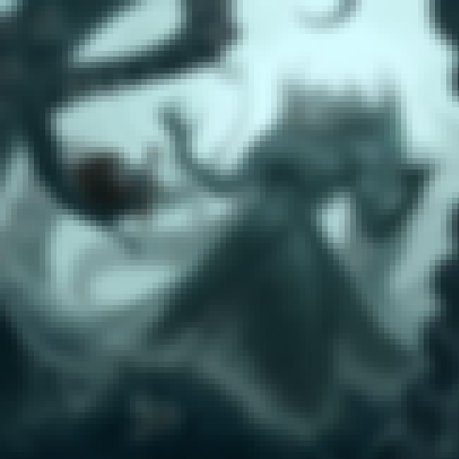 Kraken is listed (or ranked) 4 on the list Disturbing Cryptozoological Fan Art