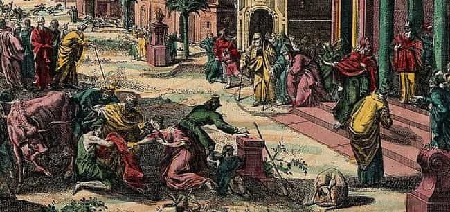Gnats Tormented Egypt, Feastin... is listed (or ranked) 4 on the list Frogs, Boils, And A Blood River –The Biblical Plagues That May Have Really Happened