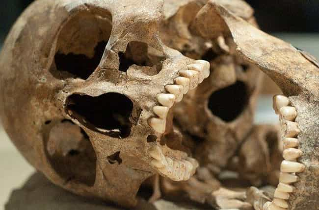 Some Skulls Were Likely Kept A... is listed (or ranked) 2 on the list 54 Dismembered Skeletons Were Discovered In An Ancient Grave, But There Were Only 51 Heads