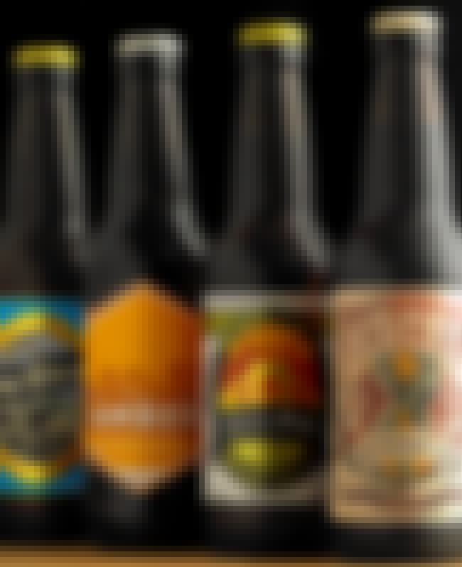 Beer Across America is listed (or ranked) 2 on the list The Best Subscription Boxes for Beer Drinkers