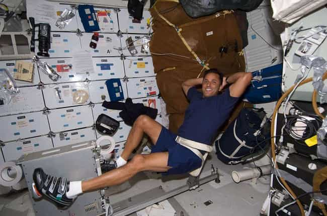 Astronauts Are Storing F... is listed (or ranked) 1 on the list The 17 Weirdest Experiments From The International Space Station