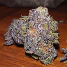 Grape Ape is listed (or ranked) 8 on the list The Best Types of Weed for Insomnia