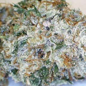Death Star is listed (or ranked) 20 on the list The Best Types of Weed for Insomnia