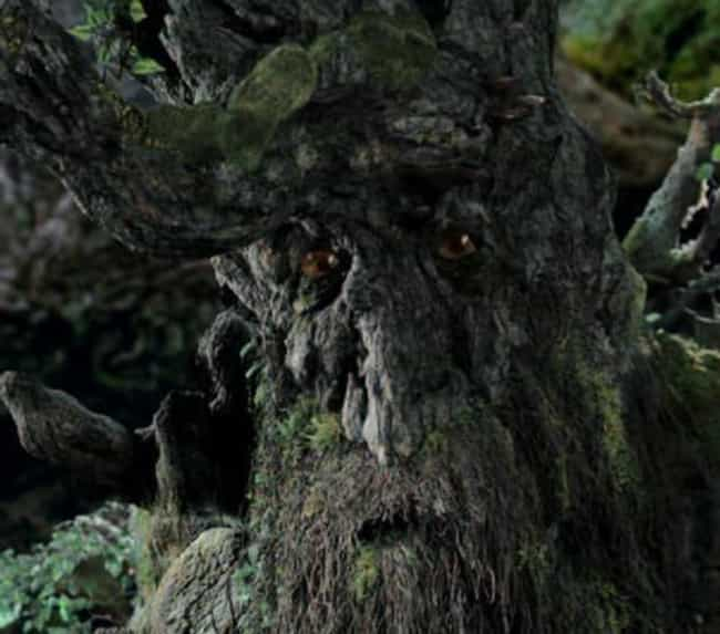 The Ents Don't Go To War Durin... is listed (or ranked) 3 on the list Huge Plot Points From 'Lord Of The Rings' That Changed For The Films