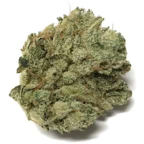 Gorilla Glue 4 is listed (or ranked) 7 on the list The Best Types of Weed for Meditation
