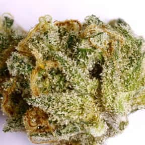 Super Silver Haze is listed (or ranked) 6 on the list The Best Types of Weed for Meditation