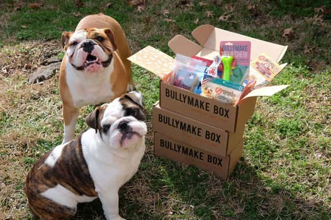 BullyMake is listed (or ranked) 3 on the list The Best Subscription Boxes for Pet Owners