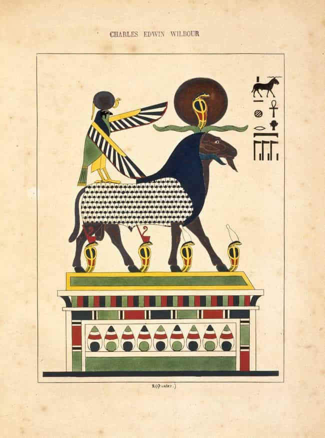 Amon-ra Denotes Smarts And Stu... is listed (or ranked) 1 on the list What Your Ancient Egyptian Zodiac Sign Says About Your Personality