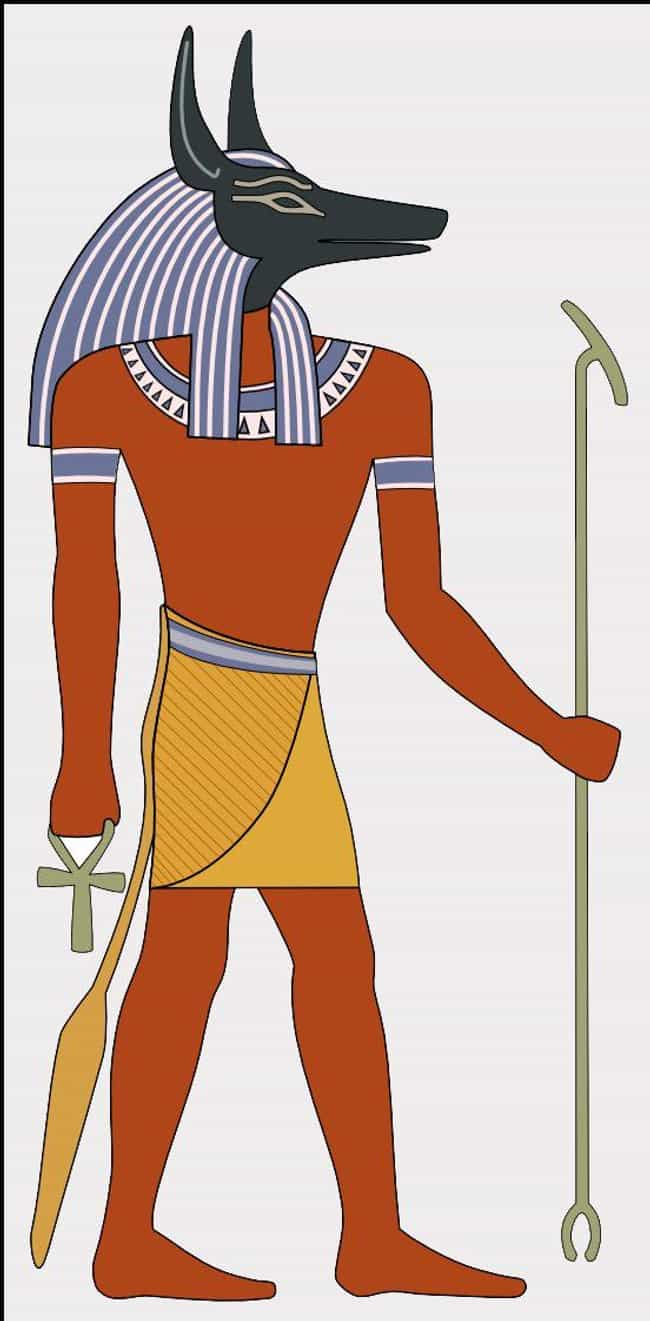 Anubis Symbolizes Tolerance is listed (or ranked) 2 on the list What Your Ancient Egyptian Zodiac Sign Says About Your Personality