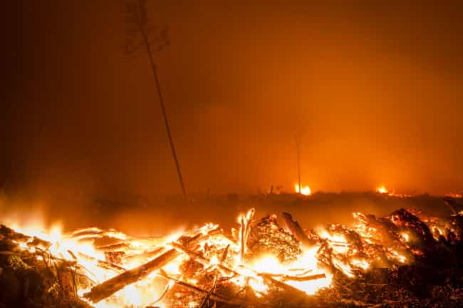 1997 Indonesian Forest Fires is listed (or ranked) 3 on the list The Worst Wildfires in History