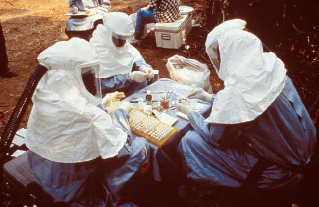 1995 Zaire Outbreak is listed (or ranked) 4 on the list The Biggest Ebola Outbreaks Of All Time