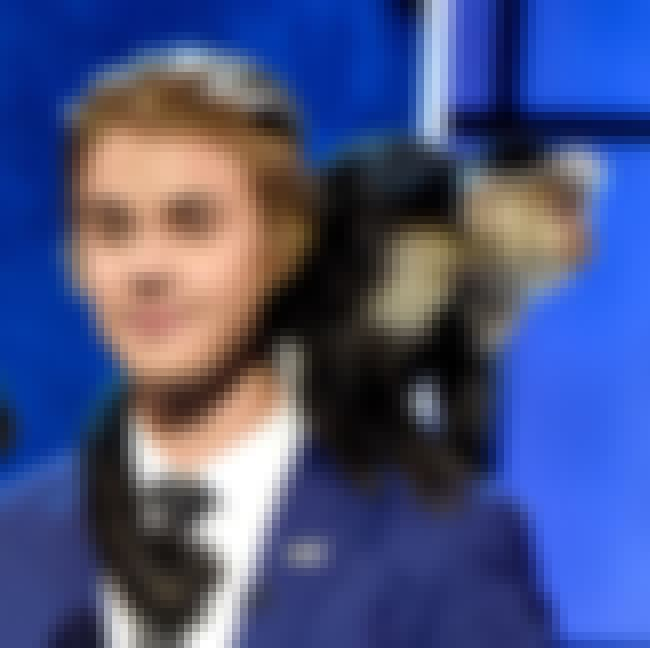 Justin Bieber's Monkey is listed (or ranked) 1 on the list Celebrities With Totally Strange (And Possibly Illegal) Pets