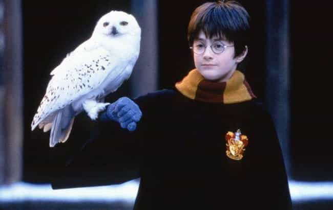 Hedwig Was Made To Take Care O... is listed (or ranked) 8 on the list All the Historical References In Harry Potter
