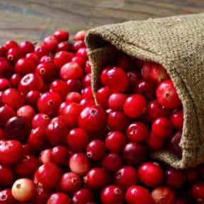 Cranberries is listed (or ranked) 13 on the list The Best Food Pairings For Zinfandel, Ranked