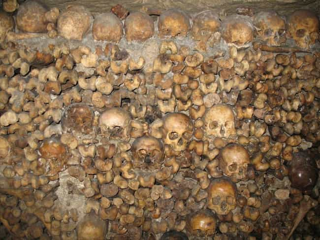 Exploring The Catacombs Can Be... is listed (or ranked) 7 on the list The Paris Catacombs Hide A Secret Cinema Club And Pools, In Addition To Six Million Dead