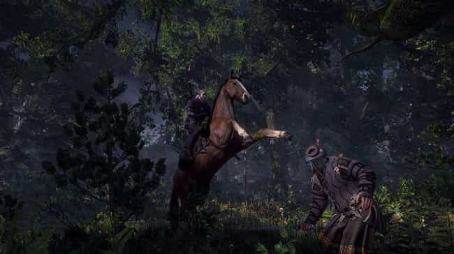 Roach (The Witcher) is listed (or ranked) 3 on the list The All Time Best Video Game Horses, Ranked