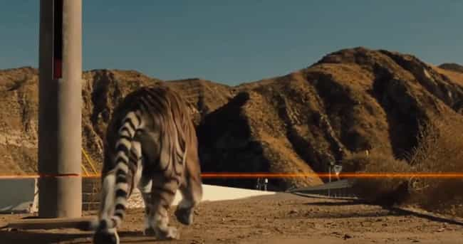 The Tiger In 'Westworld' is listed (or ranked) 3 on the list Terrible CGI You Won't Believe Made It To The Screen In 2018