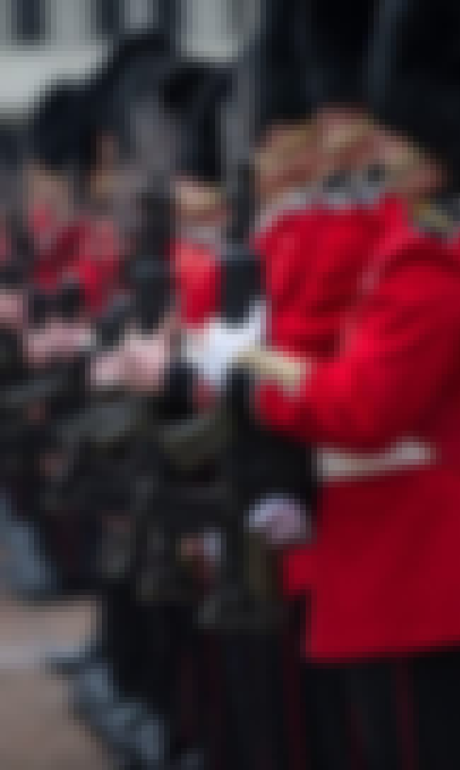 They're Authorized To Use ... is listed (or ranked) 3 on the list What It's Actually Like To Guard The Queen, According To Former Members Of The Queen's Guard