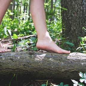 Don't Wear Socks is listed (or ranked) 8 on the list The Best Ways to Deal With Stinky Feet