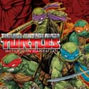 Teenage Mutant Ninja Turtles: ... is listed (or ranked) 20 on the list The Best PlayStation 4 Superhero Games