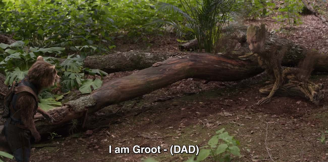 "Groot's Last Line To Rocket Is ""Dad…"""
