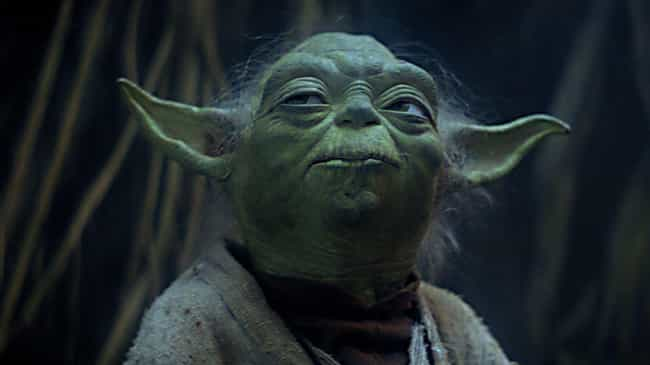 Yoda Might Not Even Exist is listed (or ranked) 2 on the list The Force Isn't Real In 'Star Wars'