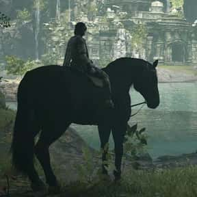 Wander & Agro is listed (or ranked) 19 on the list The 30+ Best Video Game Duos of All Time