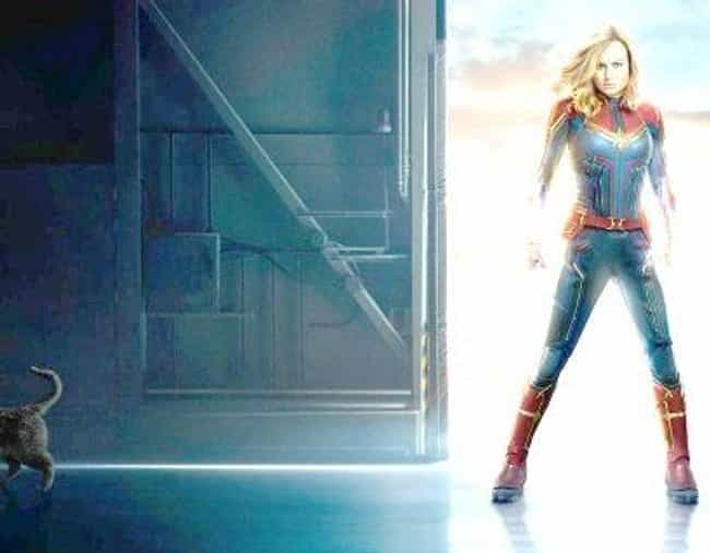 Chewie, Captain Marvel's Flerk... is listed (or ranked) 1 on the list Fan Theories About 'Captain Marvel'