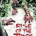 Rise of the Zombie is listed (or ranked) 10 on the list The Best Zombie Movies On Netflix